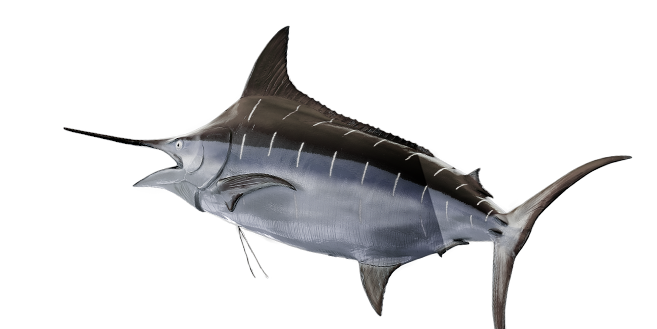 Dive into 888poker's $30 buy-in 'The Swordfish' Tournaments!