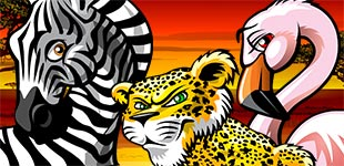 Play Wild Gambler online slots at Casino.com